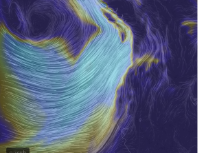 Winds at 850mb.